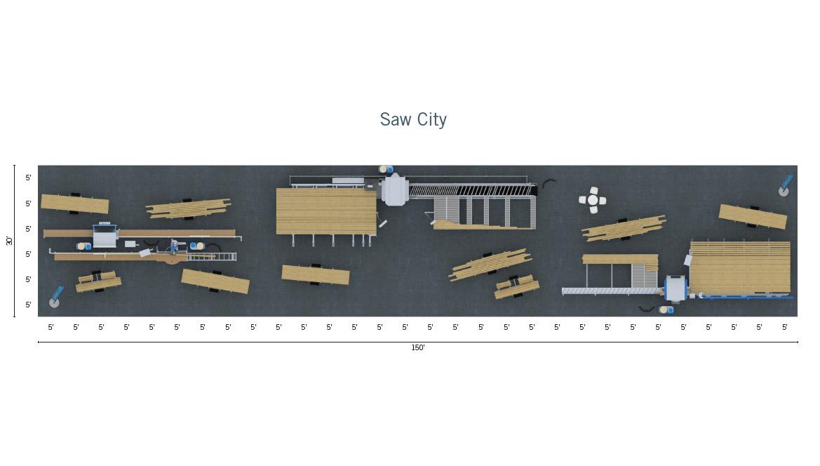 Saw City